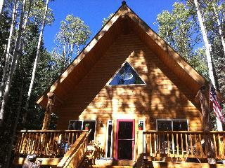 Welcome home! - Perfect Mountain Getaway-All Seasons-Cimarron,CO. - Cimarron - rentals