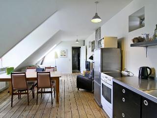 Cosy Copenhagen apartment near Sankt Hans Torv - Copenhagen vacation rentals