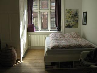 Cosy Copenhagen apartment close to Tivoli Gardens - Copenhagen vacation rentals