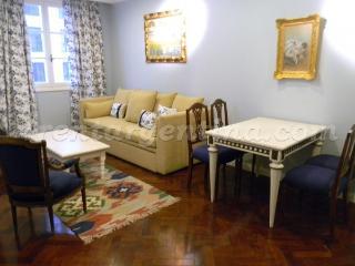 Cozy 1 bedroom Condo in Buenos Aires - Buenos Aires vacation rentals