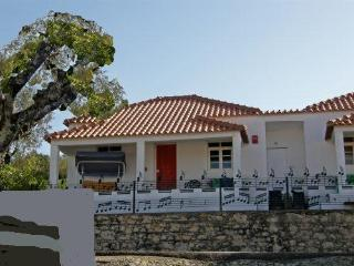 Termas-da-azenha: charming familyhouse Oliveira - Figueira da Foz vacation rentals