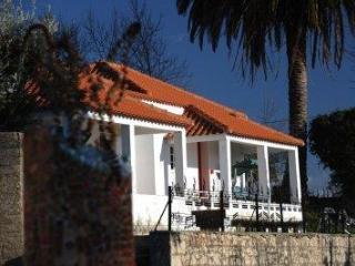 Termas-da-Azenha: Casa Palmeira - Figueira da Foz vacation rentals