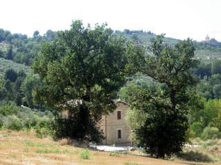 Apartment in the Green Heart of Italy (Umbria) - Bevagna vacation rentals