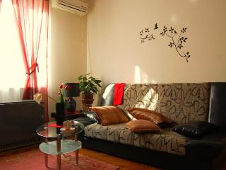 1 BR Vracar Apartment in The Center of Belgrade - Belgrade vacation rentals