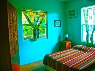 Casa Roja a modern tropical house on Caye Caulker - Caye Caulker vacation rentals