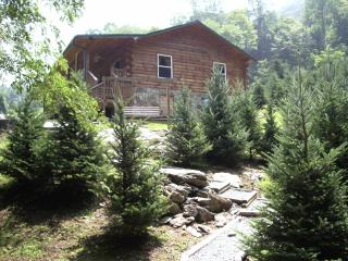 2 bedroom Cabin with Internet Access in Bryson City - Bryson City vacation rentals