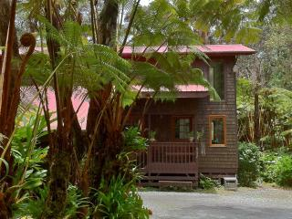 Comfortable House for viewing Kilauea Eruption - Volcano vacation rentals