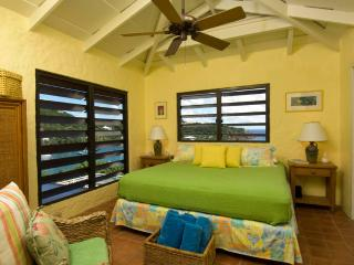 Perfect 5 bedroom Villa in Chocolate Hole - Chocolate Hole vacation rentals