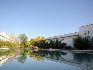 Historic villa with big pool & garden in Andalucia - Ecija vacation rentals