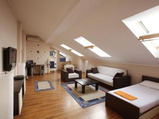 Belgrade Apartment - Supreme Location - Top Design - Belgrade vacation rentals