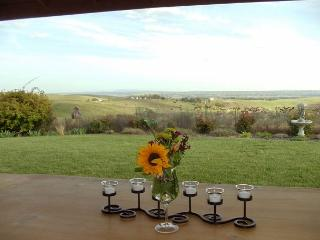 Views of Olive Orchards and Vineyards for Miles - San Miguel vacation rentals