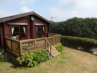 3 bedroom lodge, quiet area of N Devon nr Clovelly - Woolsery vacation rentals