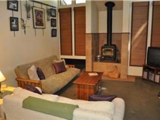 Mammoth Lakes 1 BR & 2 BA House (St. Moritz #59) - Image 1 - Mammoth Lakes - rentals