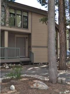 Gorgeous Condo in Mammoth Lakes (St. Moritz #15) - Image 1 - Mammoth Lakes - rentals