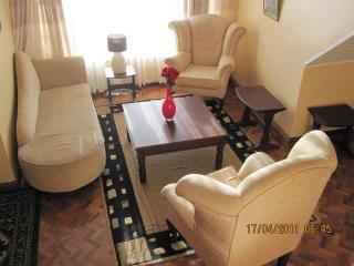 FABULOUS PENTHOUSE AT JUNCTION MALL - Nairobi vacation rentals