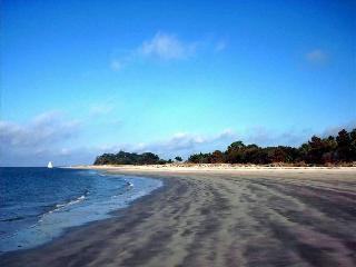 Wonderful Beachfront Villa and Historic Charleston - Seabrook Island vacation rentals