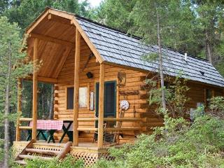 IDAHO LOG CABIN AT WILLIAMS LAKE-SLEEPS 6 - Salmon vacation rentals