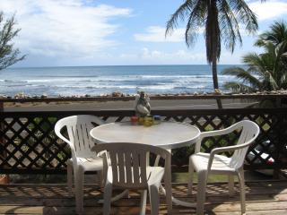 Romantic 1 bedroom Condo in Kekaha - Kekaha vacation rentals