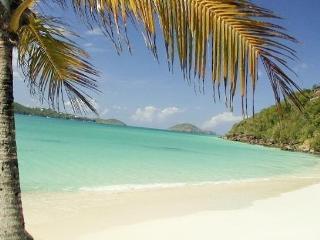 Luxury 2Bed/2Bath On Pocket Beach/Private Deck - Saint Thomas vacation rentals
