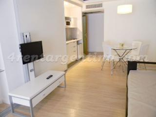Charming Studio with Internet Access and Television - Buenos Aires vacation rentals