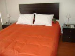 Brand New Luxury Apartment In The Barranco - Lima vacation rentals