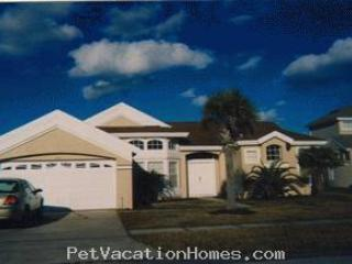 Large Disney vacation home at dusk . - Disney Pet friendly vacation home large pool - Kissimmee - rentals