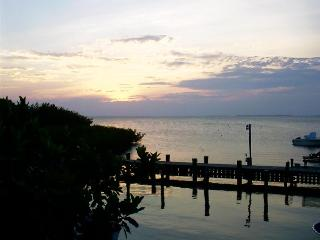 Islamorada Tropical Escape! Clean, Affordable & Li - Islamorada vacation rentals