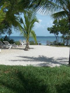 Islamorada Tropical Escape! Clean, Affordable & Li - Islamorada vacation rentals
