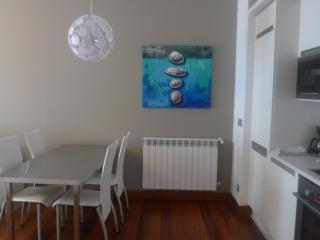 SUPER CENTRAL-SAN MARCIAL 28 - PARKING INCLUDED - San Sebastian - Donostia vacation rentals