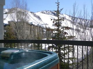 Private Hot Tub.Views of Slopes.Discount Lift Tix* - Steamboat Springs vacation rentals