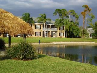 Palm Tree Paradise - Naples vacation rentals