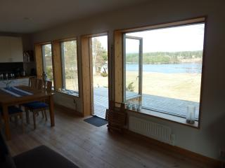 Overlooking the river in Älvdalen, Dalarna - Alvdalen vacation rentals