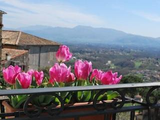Perfect House in Palestrina with Satellite Or Cable TV, sleeps 4 - Palestrina vacation rentals