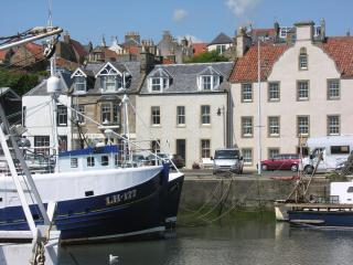 Pittenweem Harbour (house and optional apartments) - Pittenweem vacation rentals