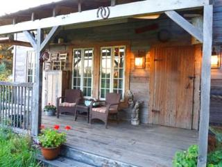 Cabin with Hot Tub and Fire Pit near Cedar Point - Bellevue vacation rentals