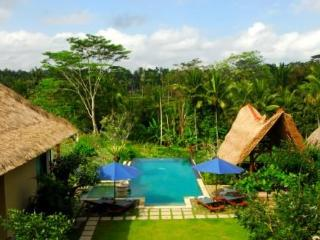 Villa Sebali serene,luxurious 4 bedrooms villa - Payangan vacation rentals