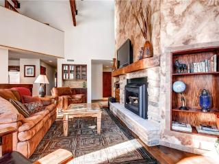 Nice Condo with Mountain Views and Fireplace - Telluride vacation rentals