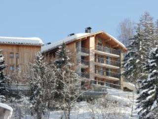 Les 3 Glaciers 24P - Montchavin-Les Coches PARADISKI - Champagny-en-Vanoise vacation rentals