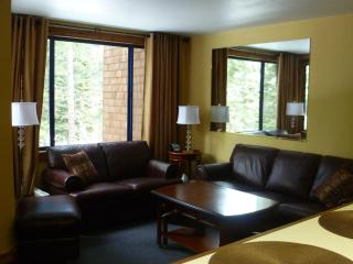Northstar Ski Trails Area 1BR Condo - Truckee vacation rentals