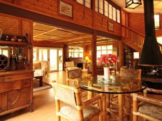 Hale Hapu'u Rain Forest Retreat - Volcano vacation rentals