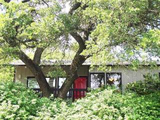 The Kaleido House - uniquely Austin - near Zilker! - Austin vacation rentals