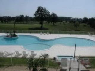 Fontenelles CCB - Domaine de Fontenelles golf course - Image 1 - L'Aiguillon-sur-Vie - rentals