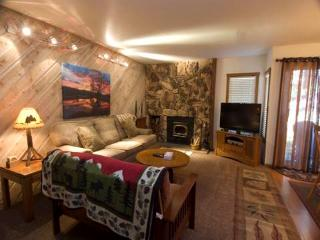 Amazing 1 Bedroom/1 Bathroom Condo in Mammoth Lakes (#9 St. Anton) - Mammoth Lakes vacation rentals