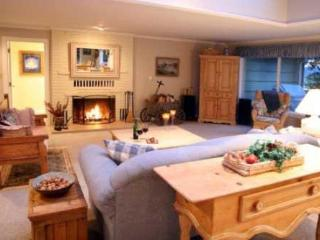 Harbor Retreat Waterfront Home - Freeland vacation rentals