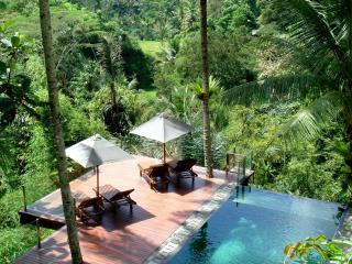 Villa Kalisha  - Perfect Romantic/Family Escape - Ubud vacation rentals