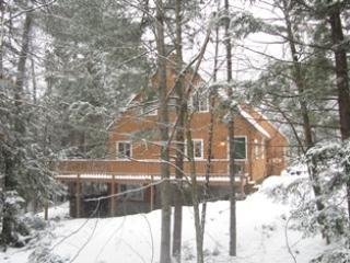 Crawford Hills #45 Bartlett Condo - Bartlett vacation rentals