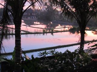 Villa Sugarbush, Nyuh Kuning Village, Ubud - Ubud vacation rentals
