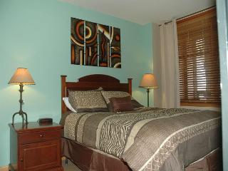Ski in Ski out 1 bedroom at the Zephyr Mountain Lodge. Great views to slopes - Winter Park vacation rentals