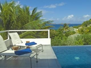 Bright Villa with Television and DVD Player - Pointe Milou vacation rentals