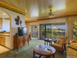 Beautiful 2 bedroom Poipu Apartment with Internet Access - Poipu vacation rentals